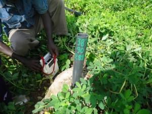 Explorationsbohrung in einem Erdnussfeld in Falea